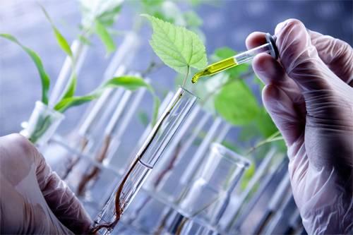 Resultado de imagen de biotecnología